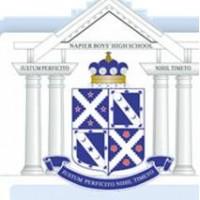 Napier Boys' to get UFB boost